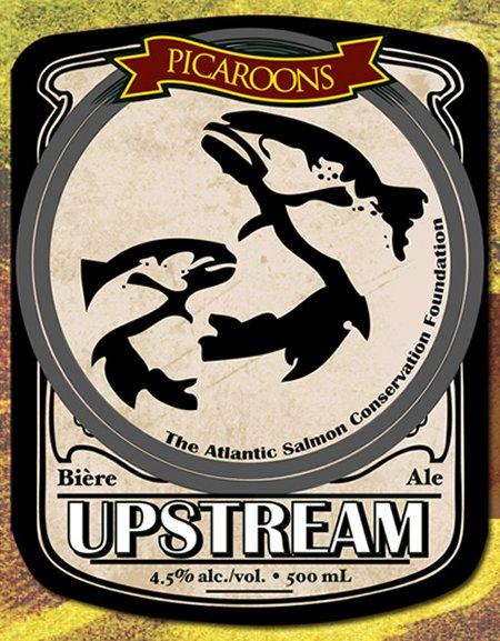 Picaroons Upstream Ale Returns This Week