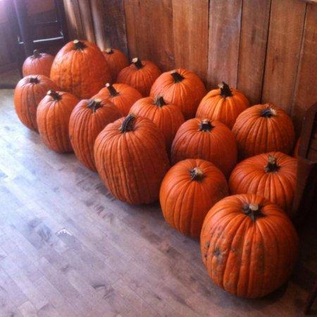 churchkey_pumpkin