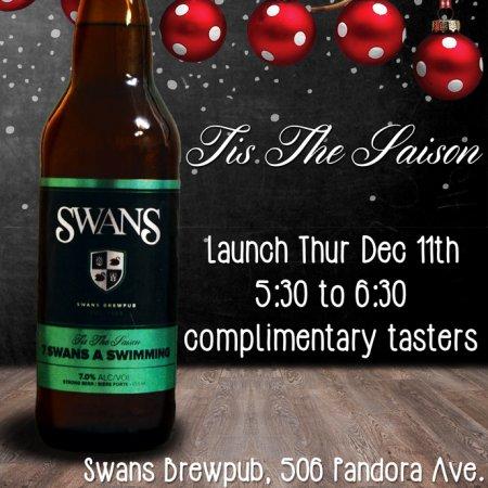 swans_sevenswans_2014