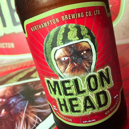 Picaroons Reveals Melonhead Cat Contest Winner for 2015
