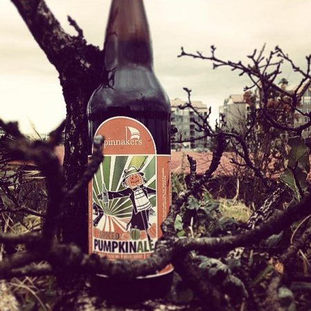 Spinnakers Releases Spiced Latte Pumpkin Ale