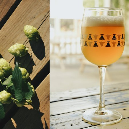 Bellwoods Brewery Announces January Release Schedule