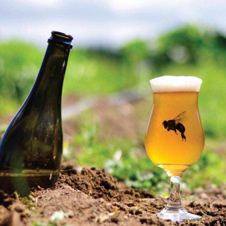 Propolis Brewing Coming to B.C. via Beerthirst