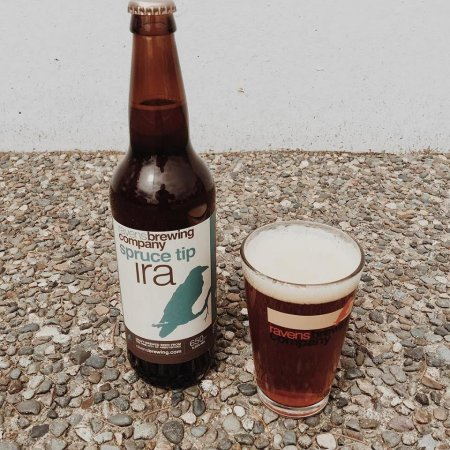 Ravens Brewing Releases Spruce Tip India Red Ale