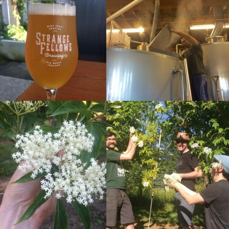 strangefellows_elderflowersaison