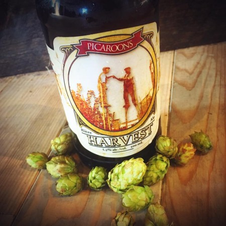 Picaroons Releases 2016 Harvest Ales