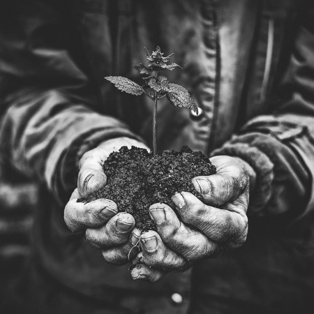 33 Acres Brewing Releases 33 Acres of Genesis VI