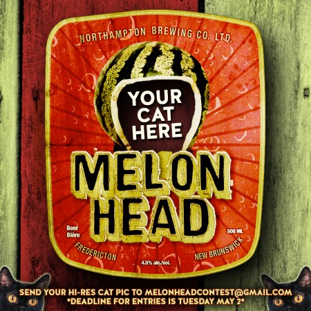 Picaroons Puts Out a Cat Call for This Year's Melonhead Mascot