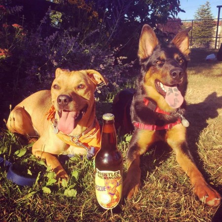 Whistler Brewing Releases Rescue Ale to Benefit Whistler Animals Galore
