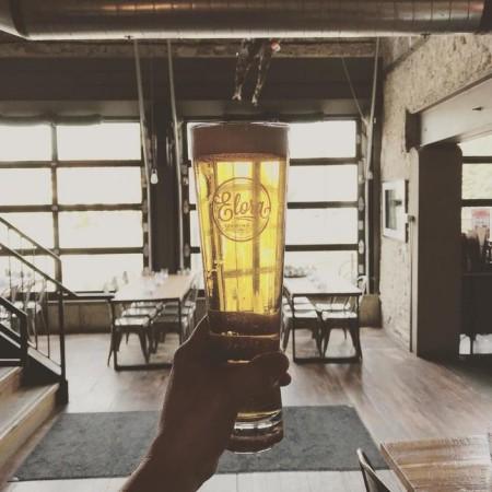 Elora Brewing Releasing Origin Premium Lager