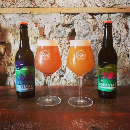 Elora Brewing Releasing Two Fruit Versions of Lodestar Sour Ale