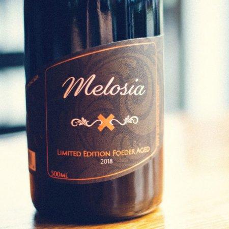 Foamers' Folly Brewing Releasing Melosia Foeder-Aged Ale