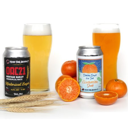 Muddy York Brewing Releases OAC21 Historical Lager and Staring Down the Sun Clementine Sour