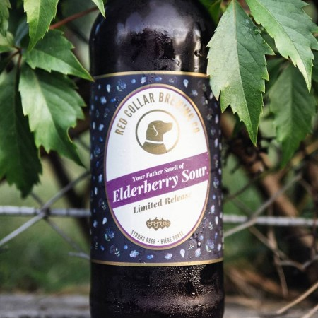 Red Collar Brewing Releases Your Father Smelt of Elderberry Sour