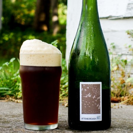 Half Hours On Earth Releases Attenborough Oak Aged Farmhouse Mild for WWF Canada