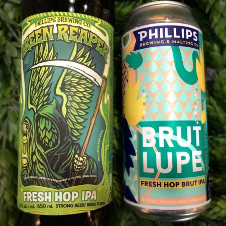 Phillips Brewing Releases Pair of Fresh Hop Ales