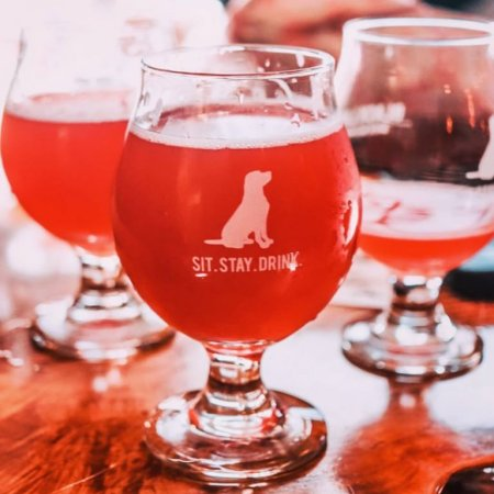 Bar Hop, Black Lab Brewing and Society of Beer Drinking Ladies Hosting Tap The Cure Fundraiser for PYNK Breast Cancer Program