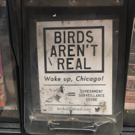 Ravens Brewing Releases Birds Aren't Real Wild Farmhouse Ale