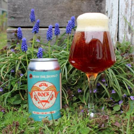 Muddy York Brewing Brings Back MY Bock Maibock