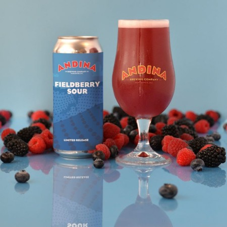 Andina Brewing Releases Arbusto Fieldberry Sour