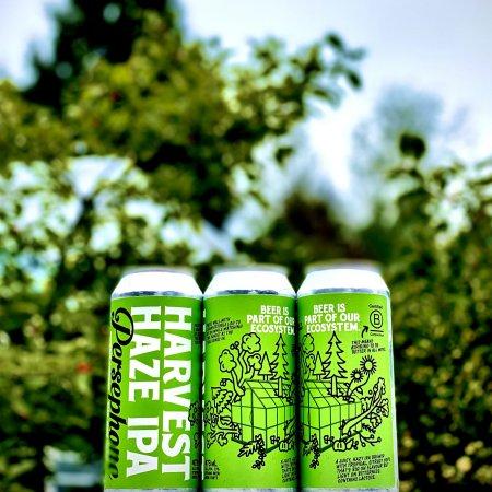 Persephone Brewing Releases Harvest Haze IPA