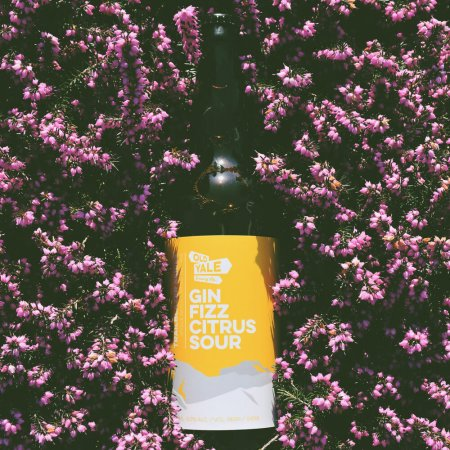 Old Yale Brewing Brings Back Gin Fizz Citrus Sour