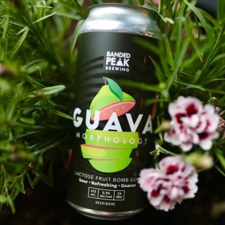 Banded Peak Brewing Brings Back Guavamorphology Gose