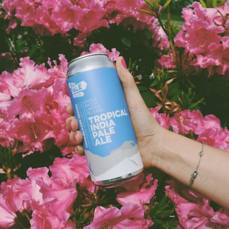 Old Yale Brewing Trailblazer Series Continues with Tropical India Pale Ale
