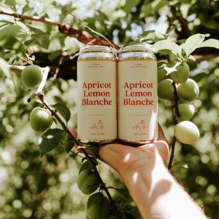 Field House Brewing Releasing Apricot Lemon Blanche