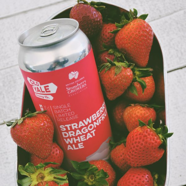 Old Yale Brewing Brings Back Strawberry Dragonfruit Wheat Ale